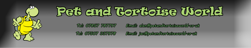 Pet and Tortoise World